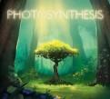 Настольная игра «Фотосинтез» или «Photosynthesis»