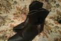 Ботинки мужские forester, ботинки казаки