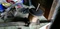 Рулевая рейка Рено Меган, Сценик 2, мотор на бмв м5 е60 купить
