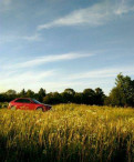 Купить рено сандеро степвей 2016 года с пробегом, honda Civic, 2000, Сертолово