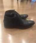 Мужские сапоги без меха, baldinini мужские туфли
