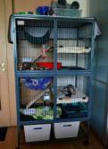 Клетка midwest ferret nation 91, 4х63, 5х158, 1h см