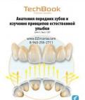 Анатомия передних зубов и изучение принципов естес, Санкт-Петербург