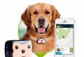 Ошейник-GPS Трекер для собаки/кошки