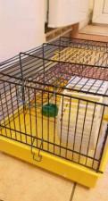Клетка для грызунов, Санкт-Петербург