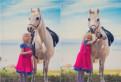 Катание на лошадях и пони, Сосновый Бор