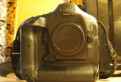 Canon 1Dx / пробег 123 тыс