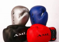 Перчатки боксерские AML