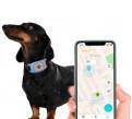 GPS-ошейник для собак и кошек. Контроль питомца, Санкт-Петербург