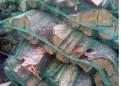 Дрова в сетках