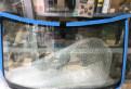 Защита двс и кпп bmw x6 e71 2008-, лобовое стекло