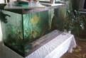 Продажа аквариума, Советский