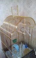 Золотая клетка для птицы
