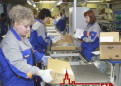 Упаковщик на производство игрушек, Ломоносов