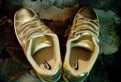Продам кроссовки, сороконожки adidas f50 adizero trx