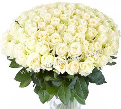 101 Роза белая Букет крупный