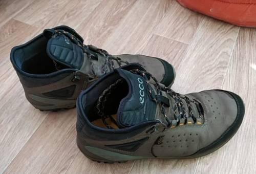 Купить футзалки по интернету, ботинки Ecco biom venture gore tex