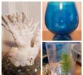 Коралл, бокал аквариум