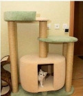 "Когтеточка домик для кошки 110см ""Гулливер"" нн, Санкт-Петербург"