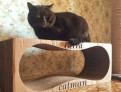 Лежанка для кошек