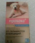 Прококс - средство от паразитов для собак и щенков